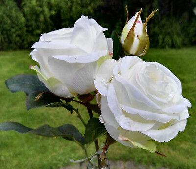 Wie echt ! Prächtige weiß Englische Rosen Kunstblume Seidenblume Textilblume