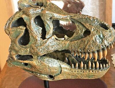t rex skull for sale  USA