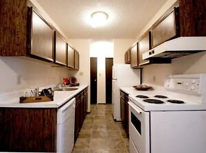 Spacious 3 Bedroom Withe new vinyl and Storage Avail Now