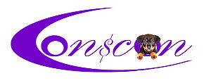 ConsCon