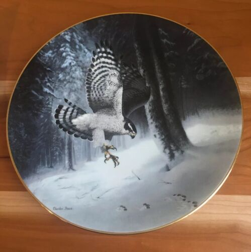 Photo The Northern Goshawk by Charles Frace Plate 2nd Issue Soaring Majesty Series