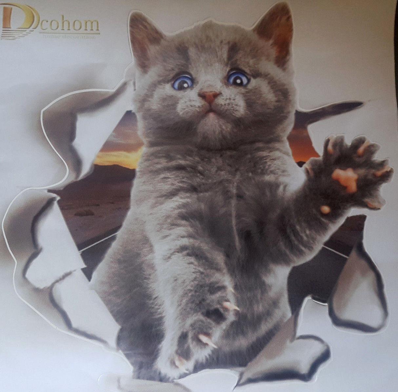 Katzen-Wand-Aufkleber-Katze-Bild-Wandtattoo-Schrank-Bad-Badezimmer-WC-Toilette