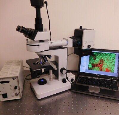 Leitz Wild Laborlux 12 Fluorescence Trinoc Microscope With 5 Mp Camera