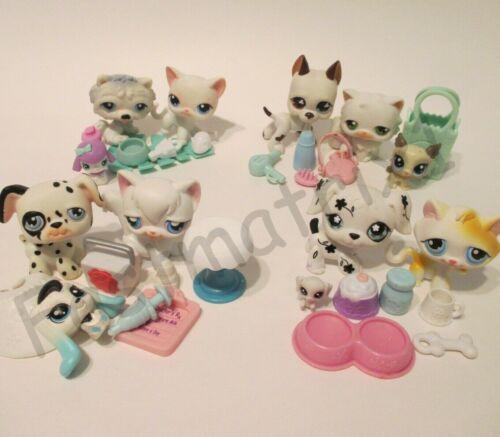 Littlest Pet Shop Lot White Cat Dog Random 8 Pcs 3 LPS 5 Accessories Authentic