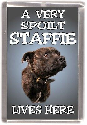 Staffordshire Bull Terrier Fridge Magnet