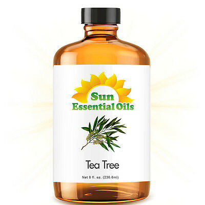 Gold Pure Tea - Tea Tree Essential Oil (Huge 8oz) 100% Pure Amber Bottle + Dropper