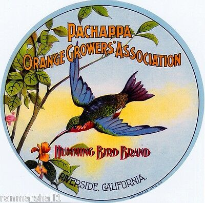 Riverside Humming bird Hummingbird Orange Citrus Fruit Round Crate Label Print