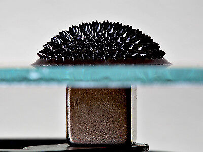 EFH1 Ferrofluid 20 ml with nitrile gloves and pipette