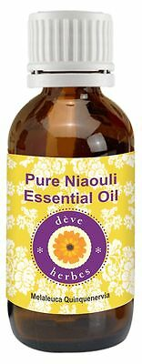 Pure Niaouli Essential Oil  Melaleuca Quinquenervia  100  Natural Therapeutic Q