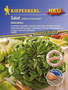 salat salanova gr n pillensaat salat saatgut samen gem se s mereien ebay. Black Bedroom Furniture Sets. Home Design Ideas