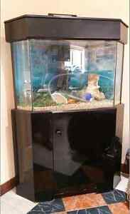 aquarium approx 60L with accesories Castle Hill The Hills District Preview