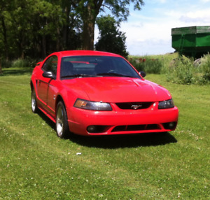 2001 Ford Mustang SVT Cobra Coupe (2 door)