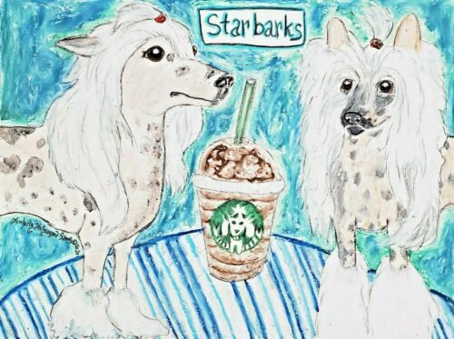 Dog Art Print 5 x 7 Chinese Crested at Starbarks by artist KSams Starbucks