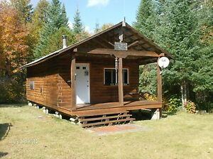 LOG CABIN FOR SALE!
