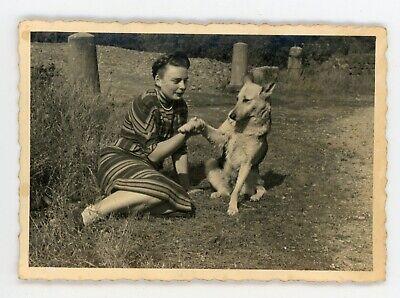 Photo snapshot 1960  dog / chien un berger allemand donne la patte