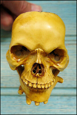 FAKE skull meerschaum pipes - BEWARE!
