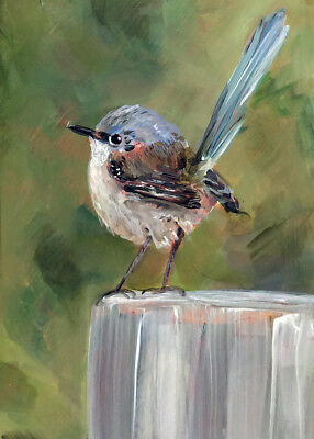 ACEO Print my orig oil painting Little Wren bird art Card ATC animal sweet