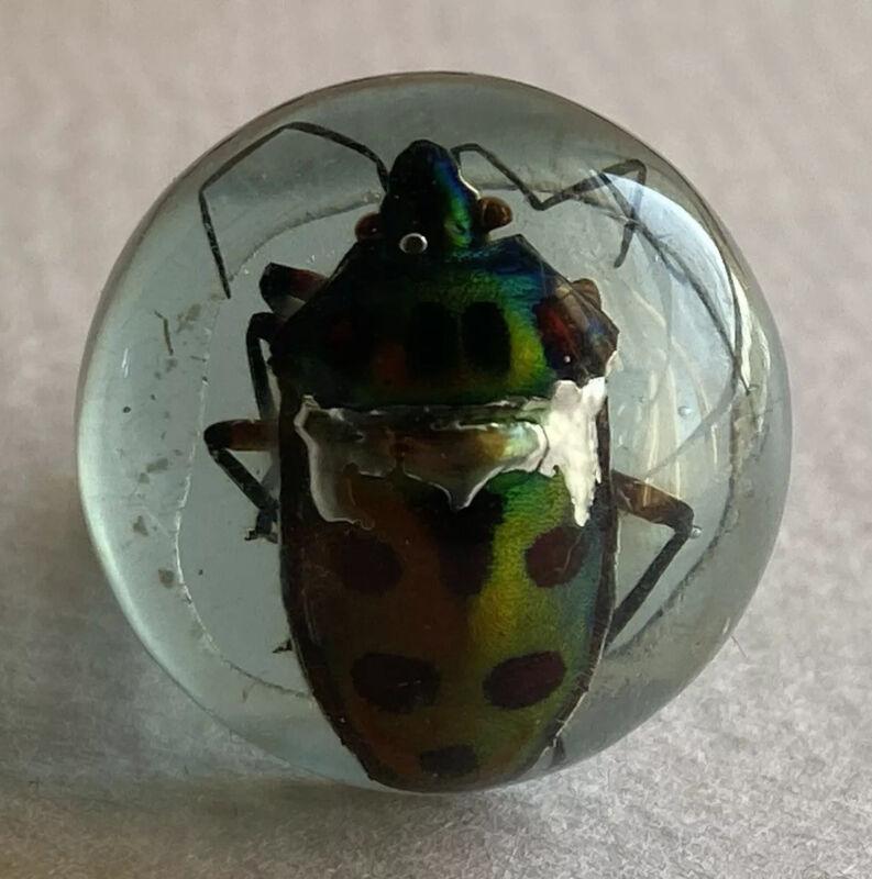 Vintage Lucite Ring Beetle