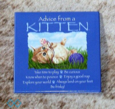 "LEANIN TREE ""Advice From A Kitten"" Magnet #26556~Be Curious~Enjoy a Good Nap~"