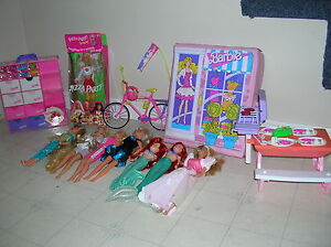 Barbie Dolls, cases, accessories, bike and picnic table