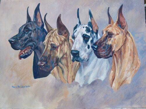 Beautiful Marcia Van Woert Great Dane Signed Painting