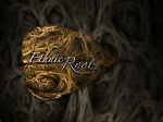 Ethnic Roots Ltd