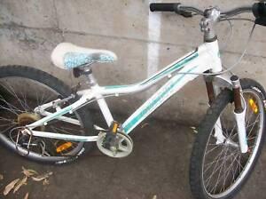 "Girls light Giant 7speed 24"" wheeled bike"