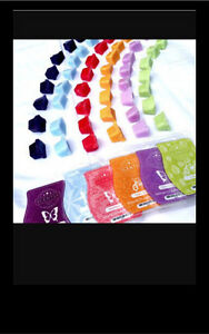 SCENTSY- free gift today only! Windsor Region Ontario image 3