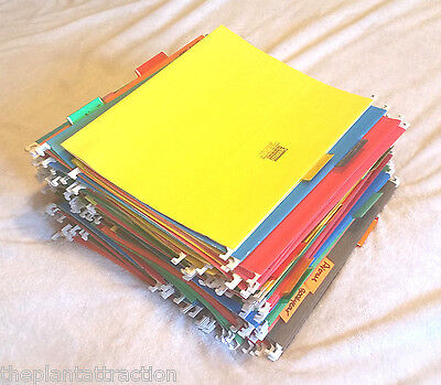 141 Hanging File Folders Office Letter Standard 8.5 X 11 Tab Assorted Colors