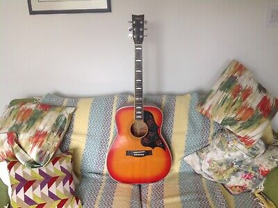 Yamaha Vintage Acoustic Guitar in Sunburst  FG 351 SB