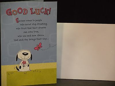 Good Luck Wishes Cards - Hallmark Good Luck Greeting Card - Best Wishes as You Follow Your Dream - MI21
