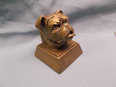 resin bulldog mascot trophy award RS470