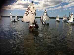 Optimist sailing boat Drummoyne Canada Bay Area Preview