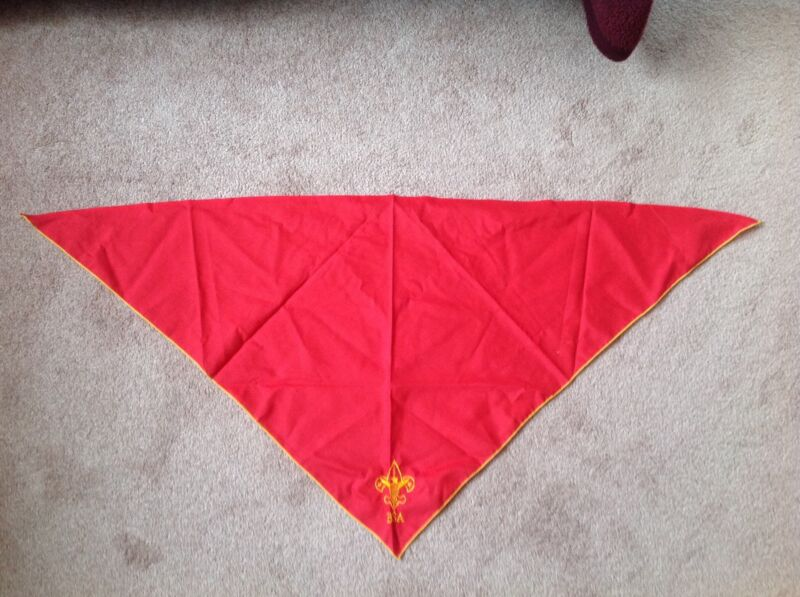 Boy scouts of America scarf #1