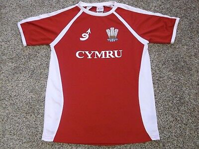 Used, CYMRU Wales Soccer/Football Jersey, Size Medium for sale  Shipping to Canada