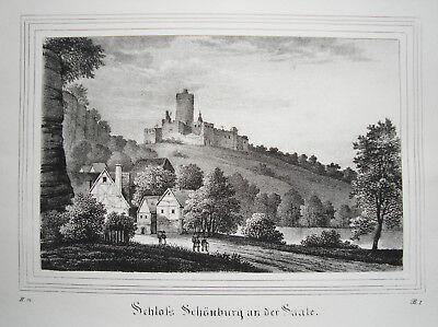 Schloß Schönburg Naumburg Sachsen-Anhalt  Lithographie aus Saxonia 1835-1841