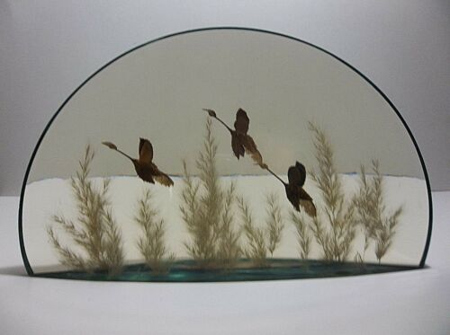 """Vintage Lucite Sculpture CANADIAN GEESE World Of Nature CANADA 5 POUNDS 12"""""""