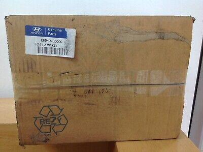 Hyundai Amica Front Fog Lamp Kit E854005000 (315)