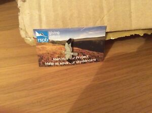 RSPB Special Pin Badge-Hen Harrier Sky dancer Picture Card. GNAH