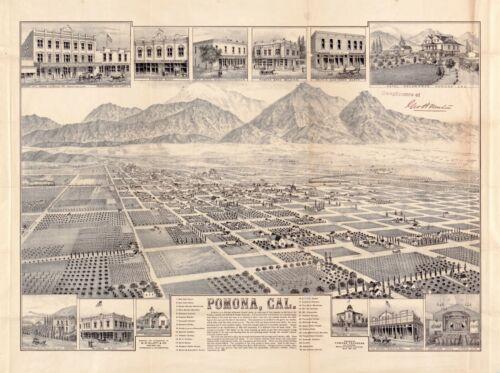 1886 POMONA CALIFORNIA panoramic map poster ca21