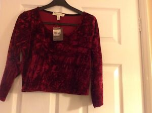 Urban Outfitters Burgundy Velour Top New With Tags