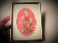 Small Brass Tone Metal Frame With Pressed Rabbit Foot Clover Leaves Flowers -  - ebay.co.uk