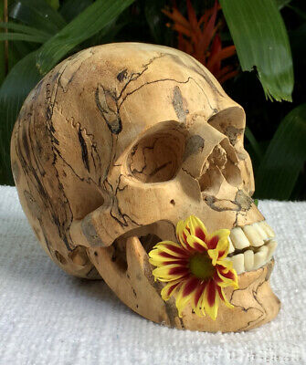 Carved Wooden Realistic looking Human Skull Amazing Decor Craving flexible Jaw
