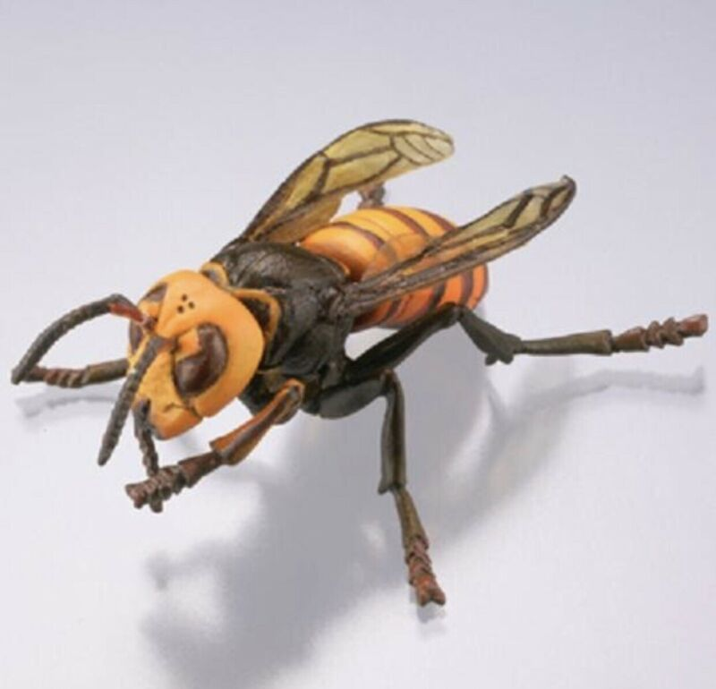 Kaiyodo Museum Q Asian Giant Hornet Murder Wasp Bee Insect Bug Figure SP