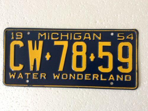 1954 Michigan license plate Water Wonderland CW 78 59