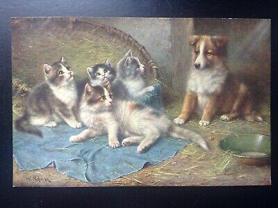Jolie ancienne carte postale fantaisie chat Schwar