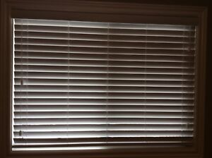 "White Blinds 49""l x 36"" h"