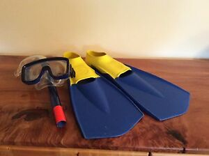 Flippers and snorkel set Latrobe Latrobe Area Preview