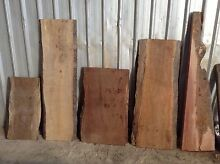Australian Hardwood Slabs Strathfield South Strathfield Area Preview