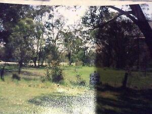 SAMURAI gardening and Lawn Mowing Winston Hills Parramatta Area Preview